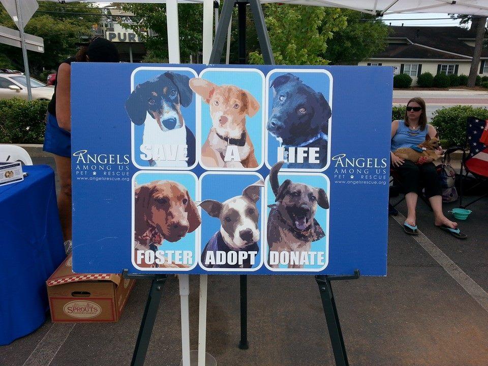 Roswell, GA Veterinarian - Chattahoochee Animal Clinic